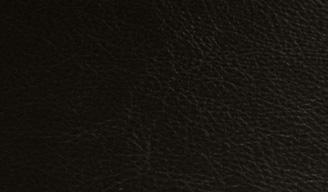 310 Soft Black