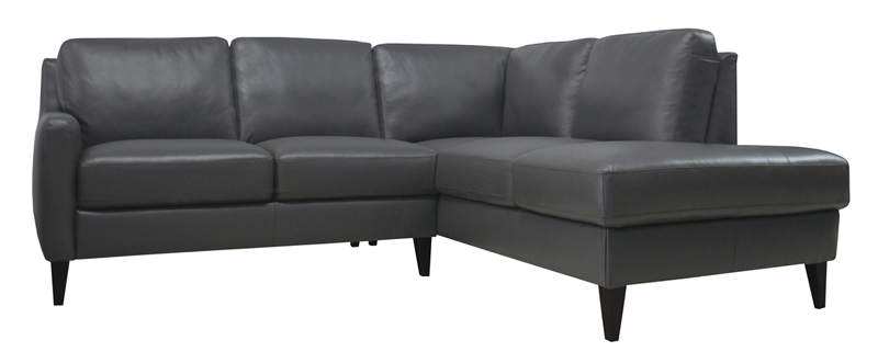 CARLO-sectional